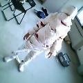 mummy[1].jpg